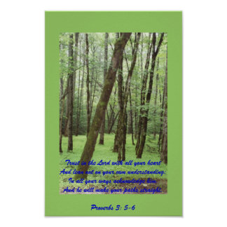 Proverbs 3: 5-6 poster with beautiful green trees