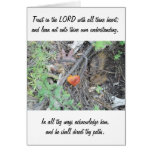 Proverbs 3:5-6 stationery note card