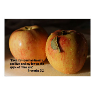 Proverbs 7:2 Scripture Poster