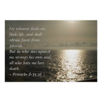 Proverbs 8:35,36 Poster print