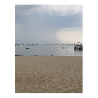Provincetown view of Bay Postcard