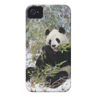 Provincia de China, Sichuan. Alimentaciones de la iPhone 4 Case-Mate Carcasa