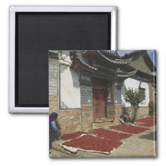 Provincia de CHINA Yunnan Tianshengying Secado Imanes