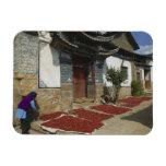 Provincia de CHINA, Yunnan, Tianshengying. Secado Imán De Vinilo
