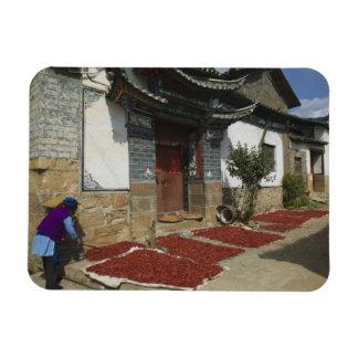 Provincia de CHINA Yunnan Tianshengying Secado Imán De Vinilo