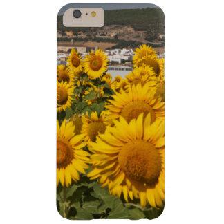 Provincia de Europa, España, Andalucía, Cádiz Funda De iPhone 6 Plus Barely There