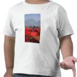 Provincia de Italia, Verona, del Benaco. de Torri Camisetas