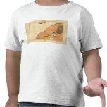 Provincia de la isla de Nueva Escocia del bretón 9 Camisetas