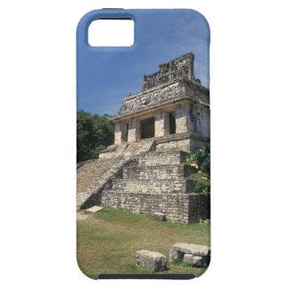 Provincia de México, Chiapas, Palenque. Templo de iPhone 5 Funda
