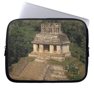 Provincia de México, Chiapas, Palenque, templo de Mangas Computadora