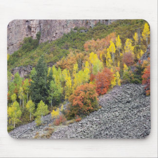 Provo River and aspen trees 10 Mousepads