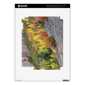 Provo River and aspen trees 10 iPad 3 Decal