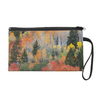 Provo River and aspen trees 11 Wristlet Clutches