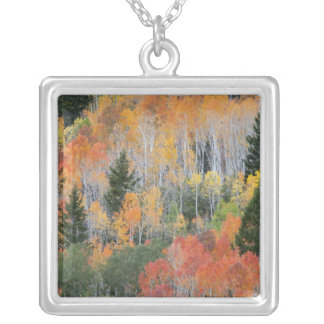 Provo River and aspen trees 11 Silver Plated Necklace