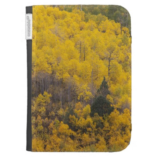 Provo River and aspen trees 12 Kindle Cover