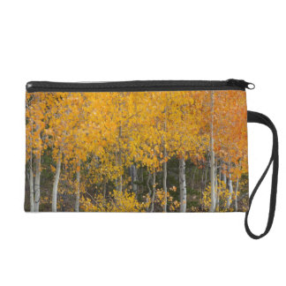 Provo River and aspen trees 13 Wristlet Clutches