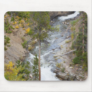 Provo River and aspen trees 14 Mousepads