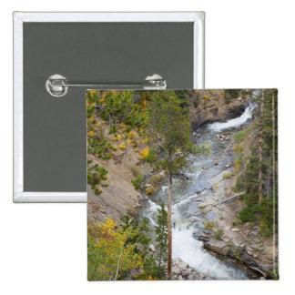 Provo River and aspen trees 14 Pinback Button