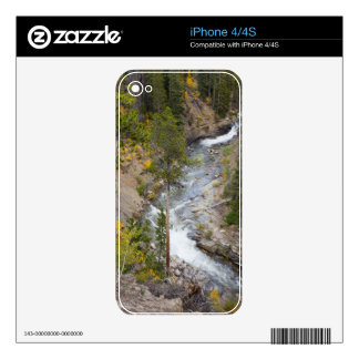 Provo River and aspen trees 14 iPhone 4 Decals