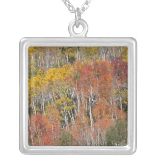 Provo River and aspen trees 15 Silver Plated Necklace