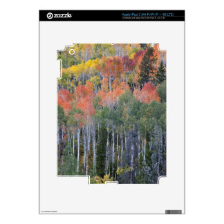 Provo River and aspen trees 16 Decals For iPad 3