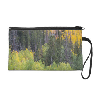 Provo River and aspen trees 2 Wristlet Clutches