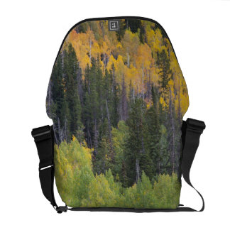 Provo River and aspen trees 2 Messenger Bags