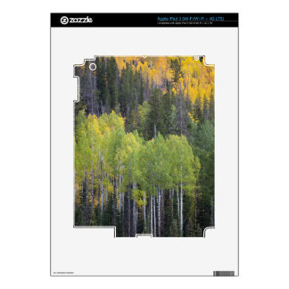 Provo River and aspen trees 2 iPad 3 Decals