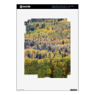 Provo River and aspen trees 3 iPad 3 Skins