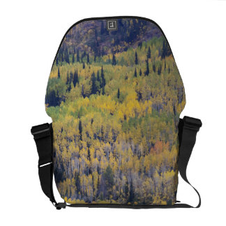 Provo River and aspen trees 3 Courier Bags