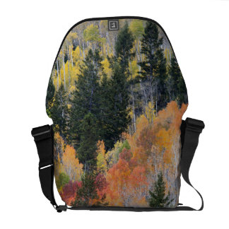 Provo River and aspen trees 4 Courier Bags