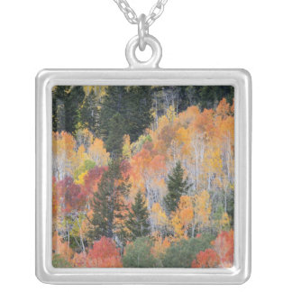 Provo River and aspen trees 4 Silver Plated Necklace