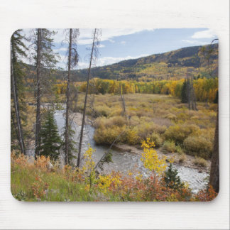 Provo River and aspen trees 5 Mouse Pad