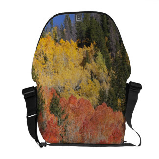 Provo River and aspen trees 6 Courier Bags