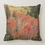 Provo River and aspen trees 6 Pillow