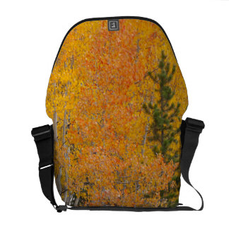 Provo River and aspen trees 7 Courier Bags