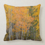 Provo River and aspen trees 7 Throw Pillow