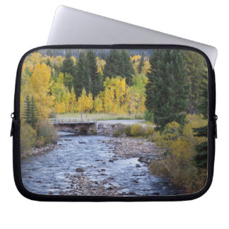Provo River and aspen trees 8 Laptop Computer Sleeve