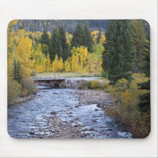 Provo River and aspen trees 8 Mouse Pads