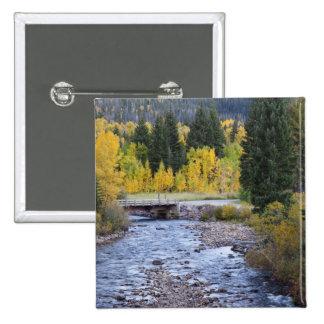 Provo River and aspen trees 8 Pinback Button