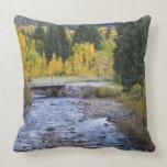 Provo River and aspen trees 8 Throw Pillows
