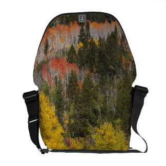 Provo River and aspen trees 9 Commuter Bags