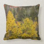 Provo River and aspen trees 9 Throw Pillows