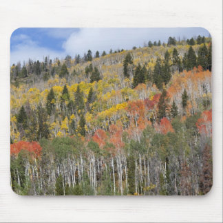 Provo River and aspen trees Mouse Pad