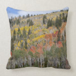 Provo River and aspen trees Pillow