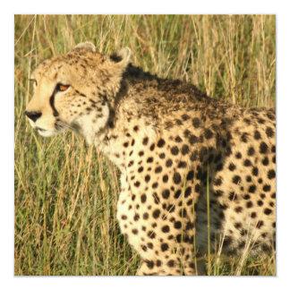 Prowling Cheetah Invitations
