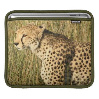 Prowling Cheetah iPad Sleeve