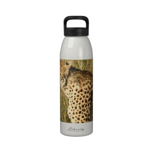 Prowling Cheetah Water Bottle