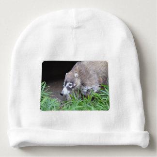 Prowling Coati Baby Beanie