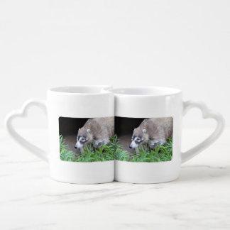 Prowling Coati Coffee Mug Set